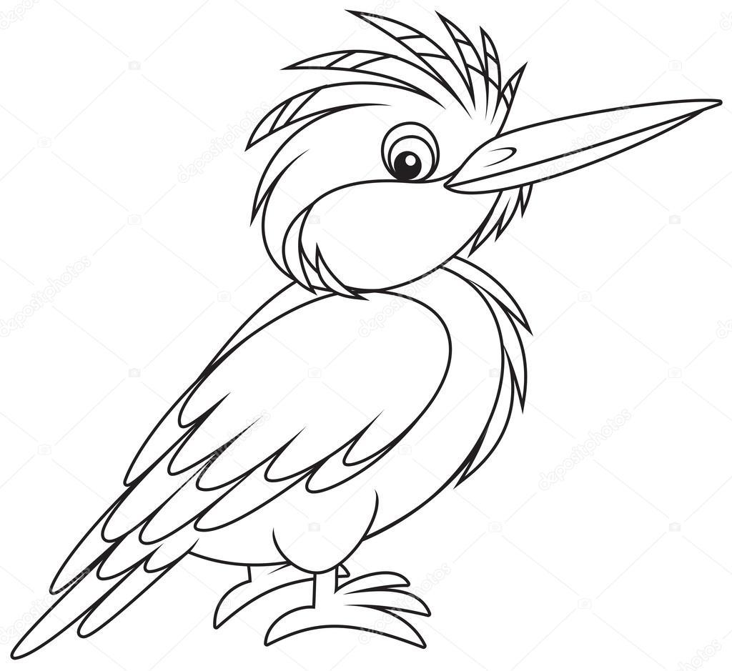 1024x939 Kingfisher Stock Vector Alexbannykh