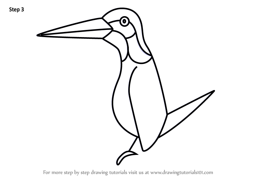 848x602 Learn How To Draw A Kingfisher For Kids (Animals For Kids) Step By