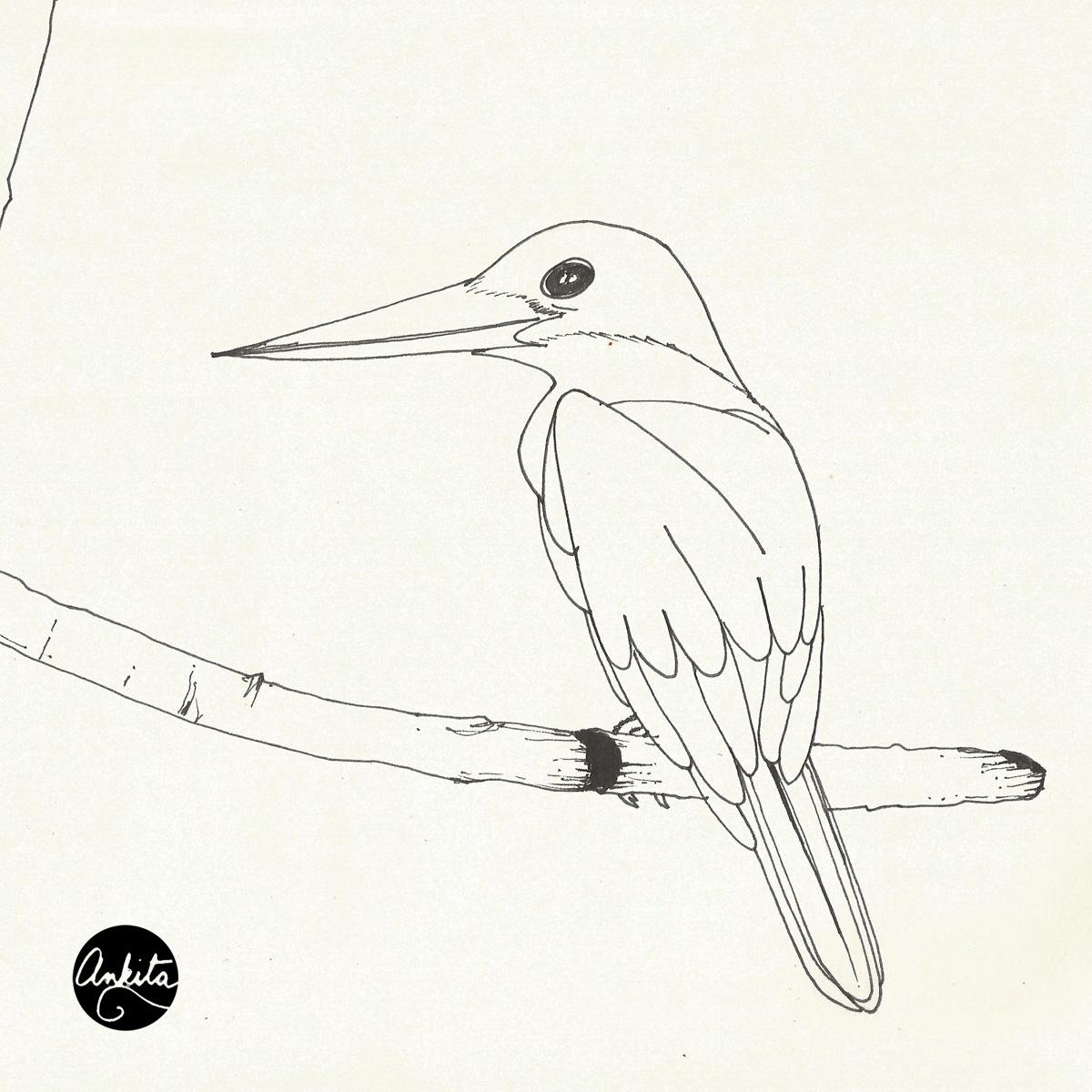 1200x1200 Stork Billed Kingfisher She Does Art