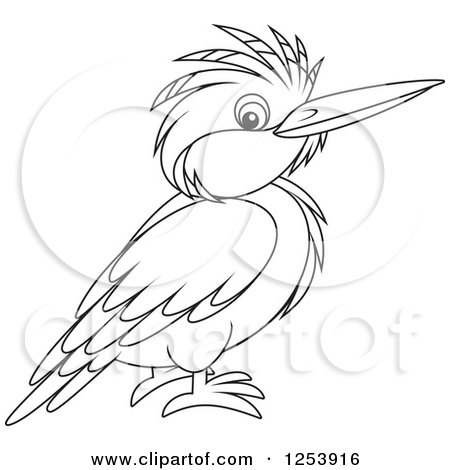 450x470 Clipart Of A Black And White Kingfisher Bird