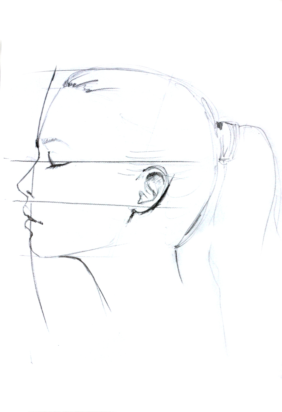 992x1448 Side On Face Reference Sketch