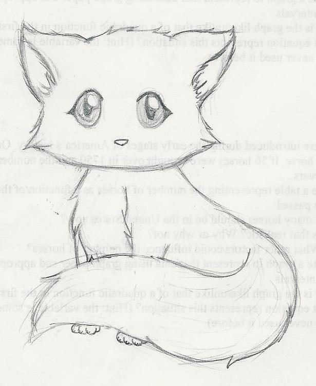 Kitten Drawing Images