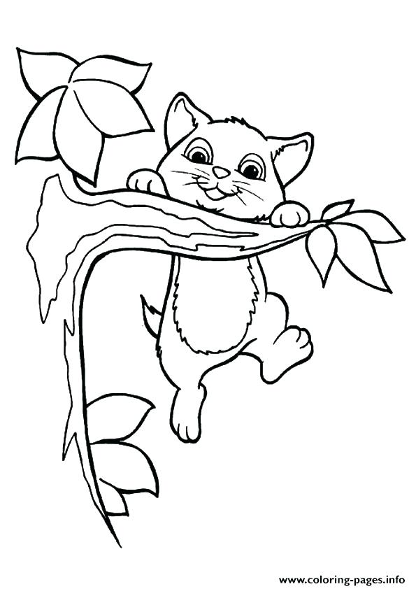 595x842 Kitten Coloring Pages Printable Cute Kitten Coloring Page Nice Cat