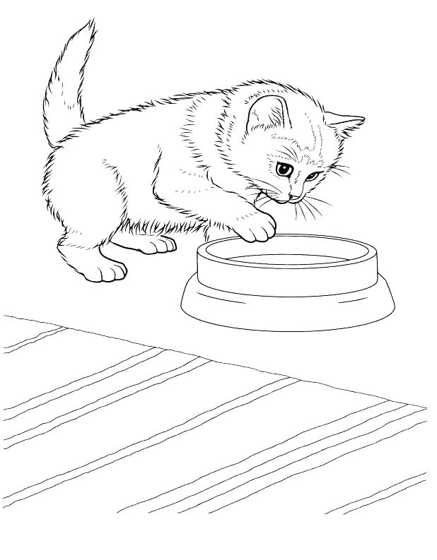 618x793 Printable Kitten Coloring Pages Best Puppy Images On Books
