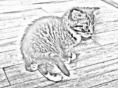 500x375 Iver Chrisser's Photos Tagged With Pencilsketches