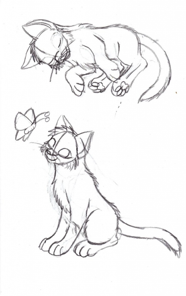 646x1024 Sketches Of Kittens Kitten Pose Sketch Cats Know They Were