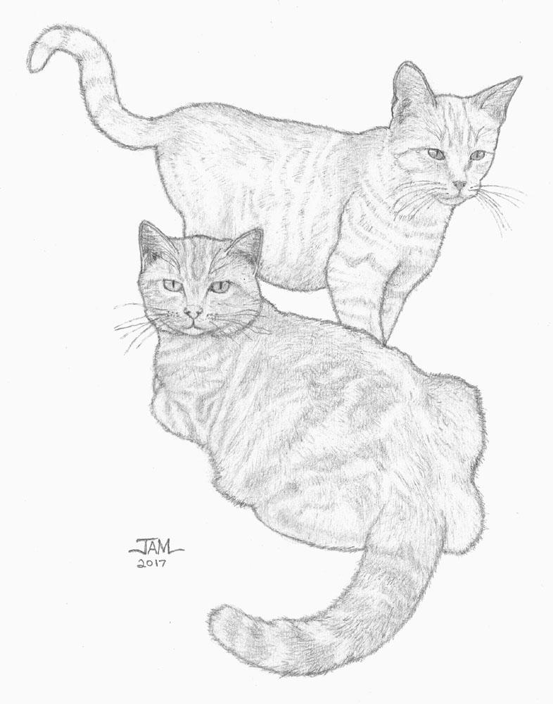 786x1000 Slideshow Image. Back To Ronny Hart Art Drawings Pencil Drawings