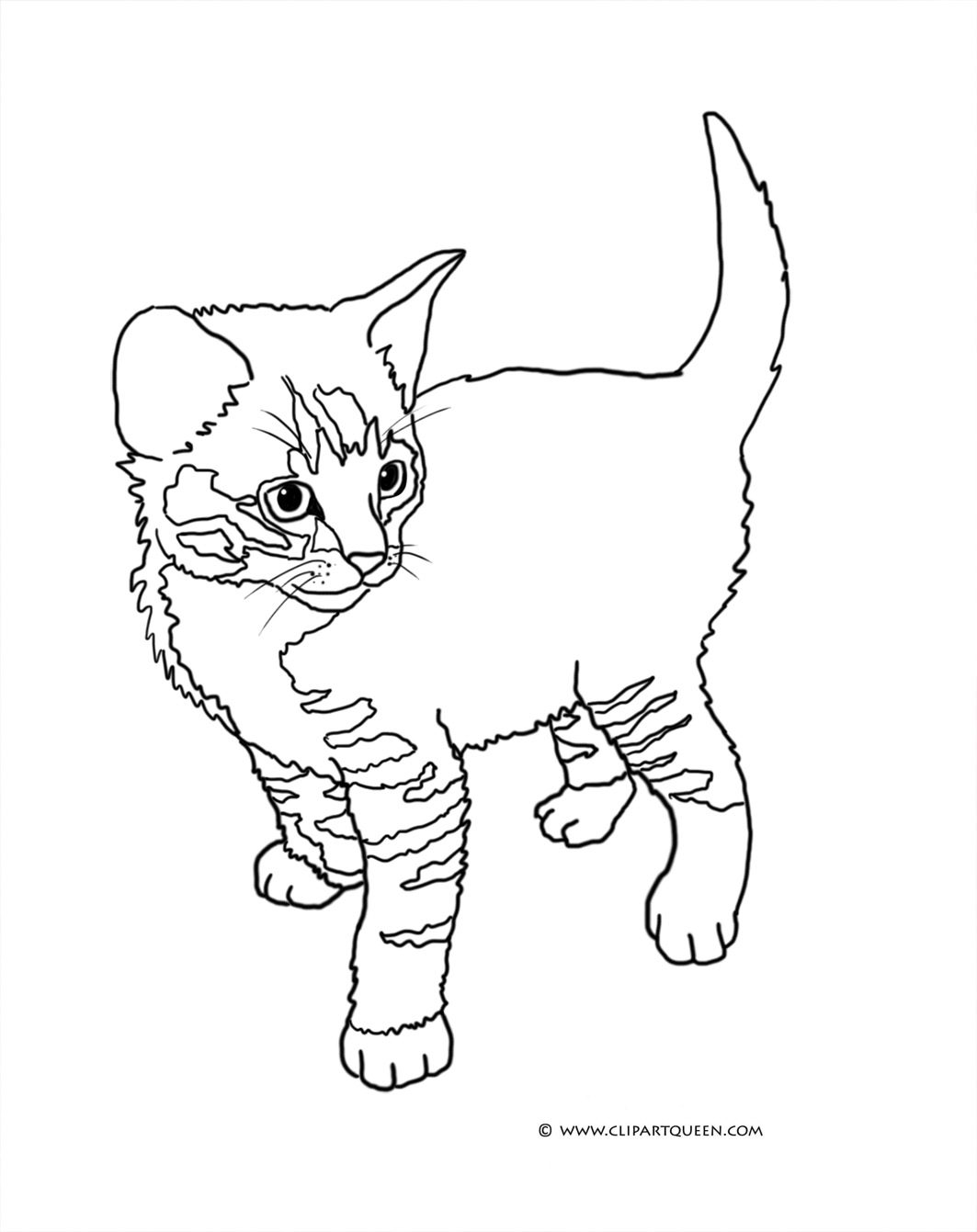 Kittens Drawing at GetDrawings.com | Free for personal use Kittens ...