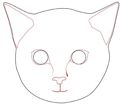 396x341 Draw A Realistic Cat's Face Cat Face, Simple Drawings And Drawings