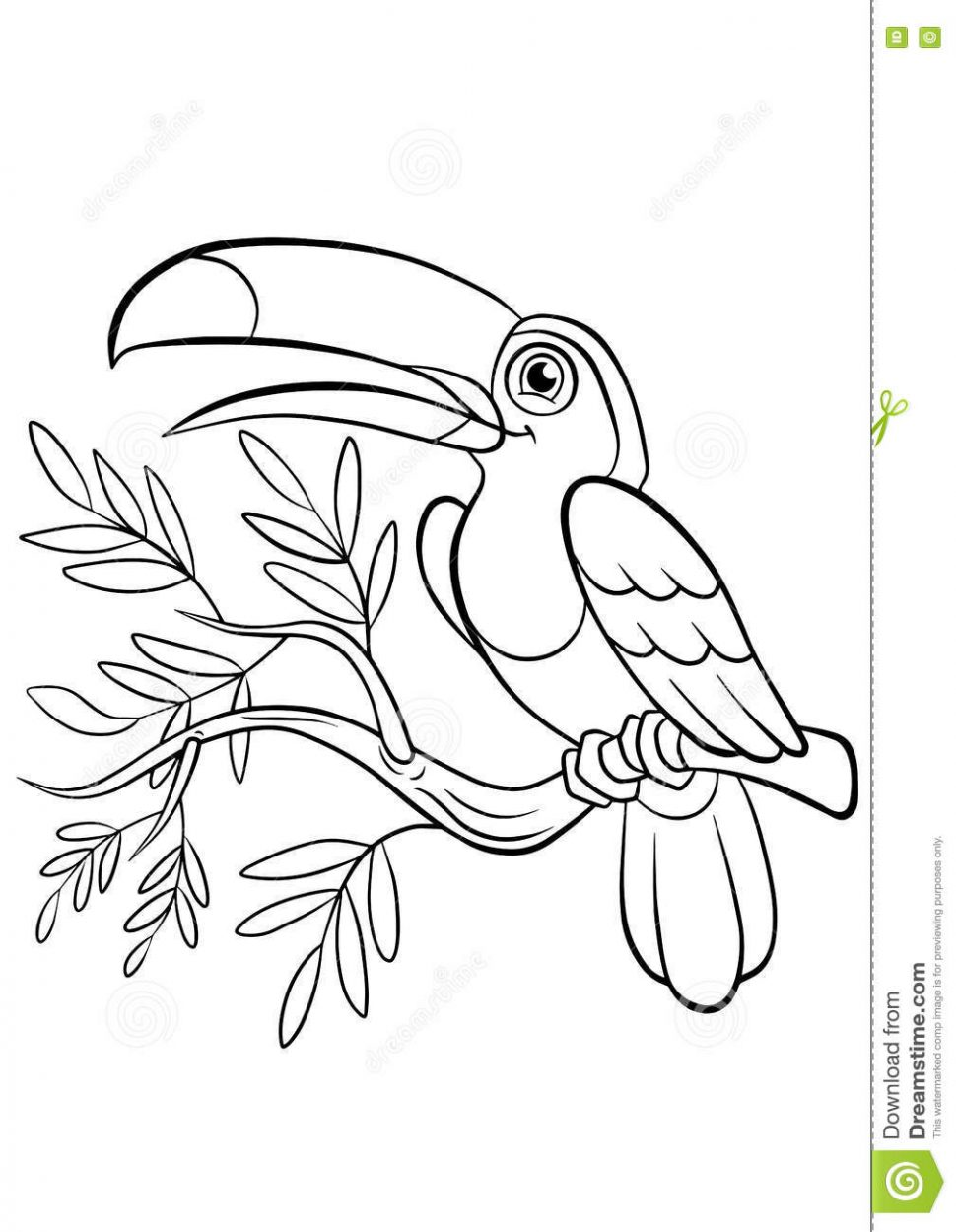 970x1250 Coloring Kiwi Bird Coloring Page Free Printable Pages Little