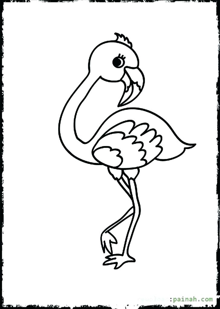 728x1024 Best Kiwi Bird Coloring Page Crayola Photo Baby Drawing Pages
