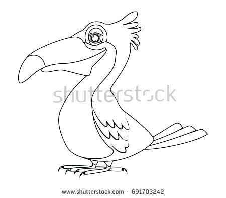 450x395 Best Kiwi Bird Coloring Page Crayola Photo Stylized Stock Vector