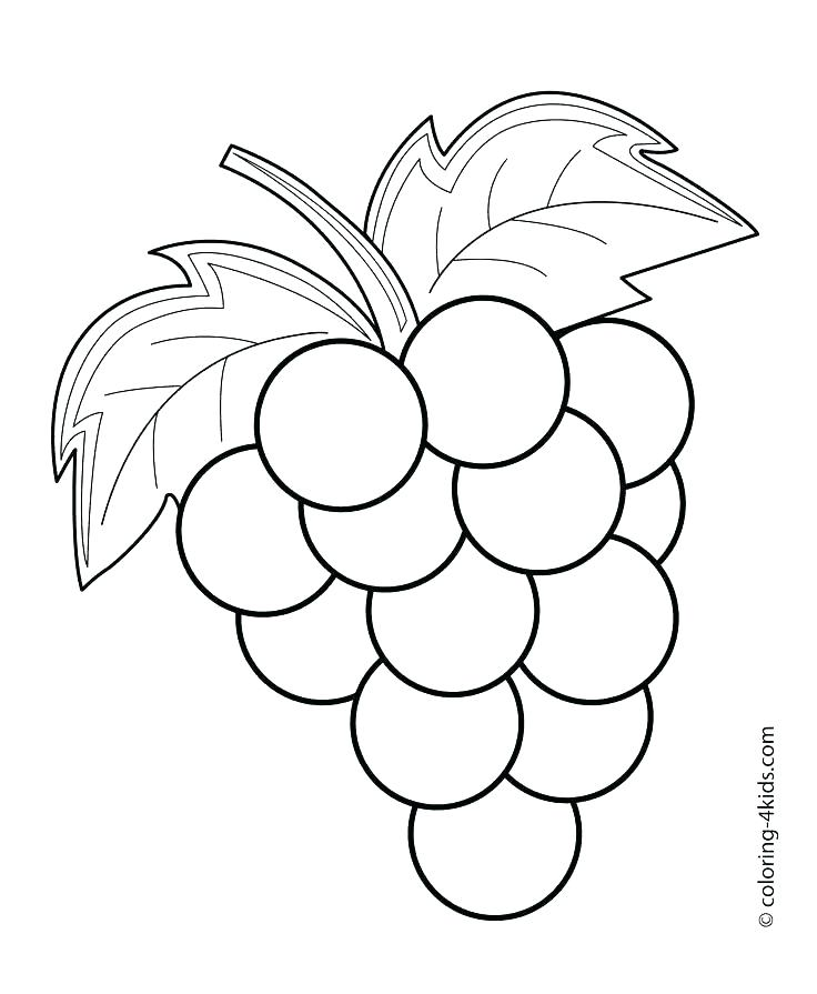 736x895 Fruit Drawings To Color Drawing And Colouring Pictures For Kids