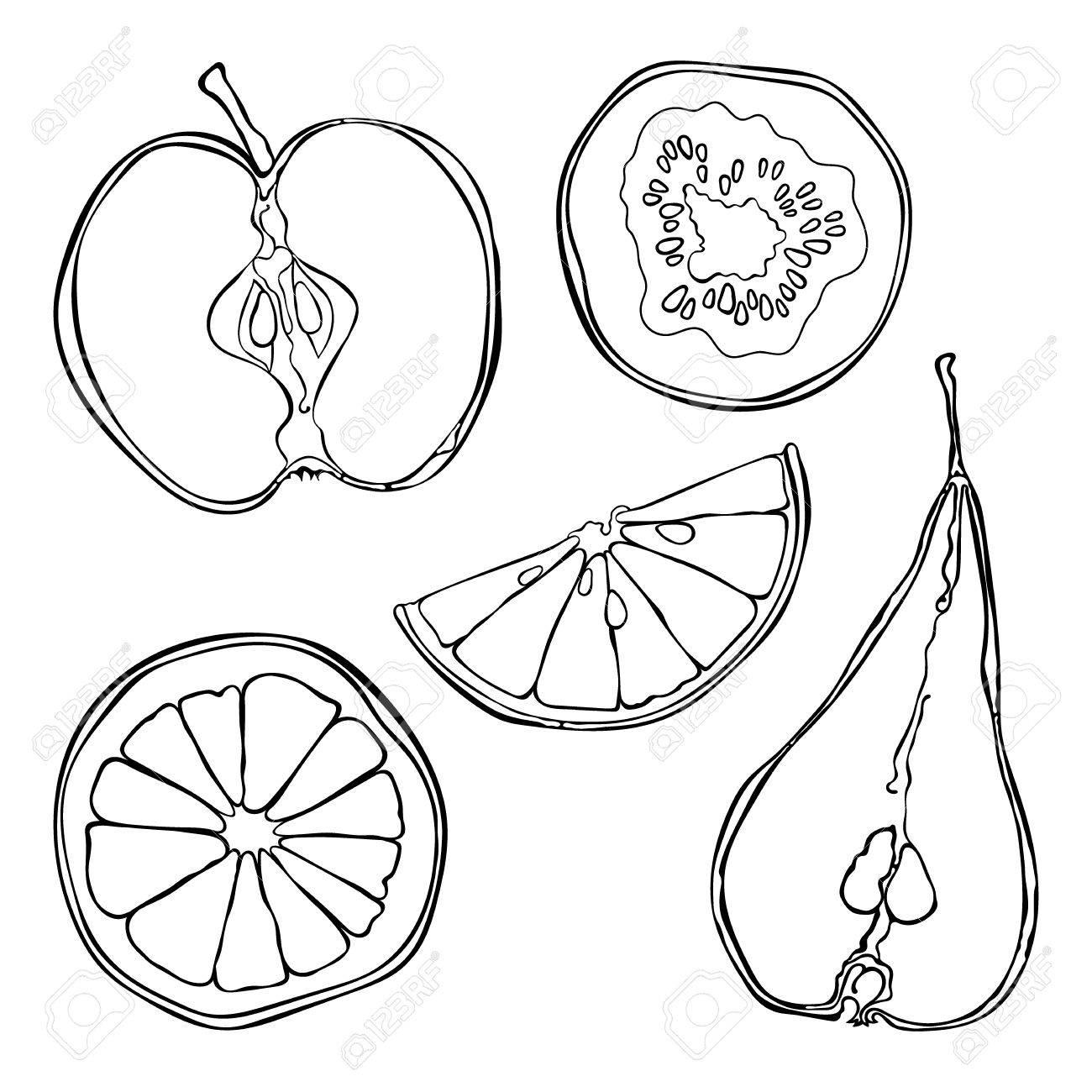 1300x1300 Fruits Orange, Lemon, Apple, Pear, Kiwi. Fruit Slices. Isolated