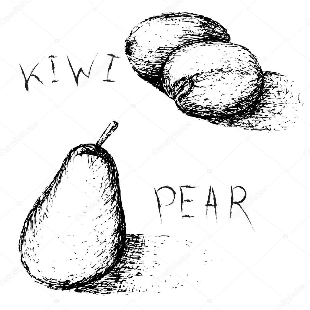 1024x1024 Hand Drawn Fruits. Summer Fruit Sketch Set. Kiwi And Pear