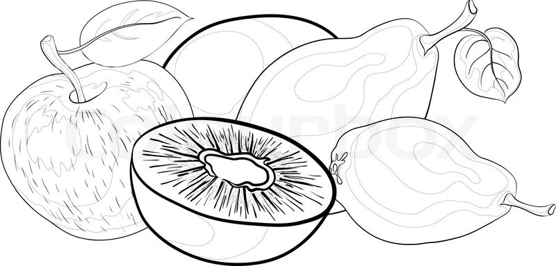800x383 Still Life, Food, Fruits, Contours On A White Background Pears