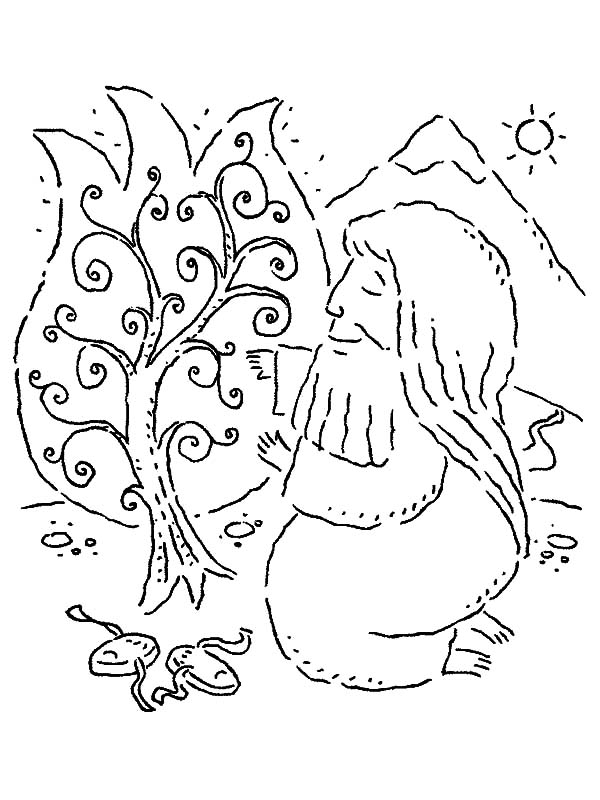 600x800 Moses Kneeling To Burning Bush Coloring Pages