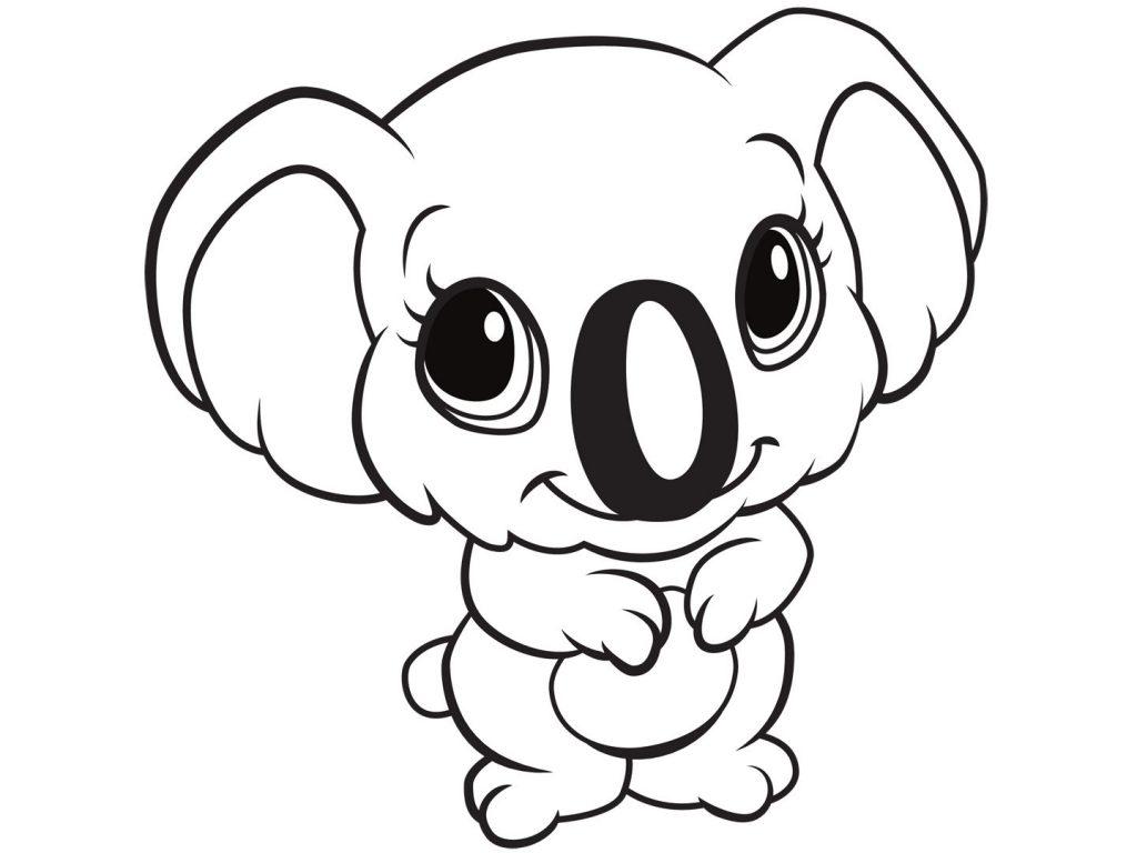 Koala Cartoon Drawing At Getdrawingscom Free For Personal