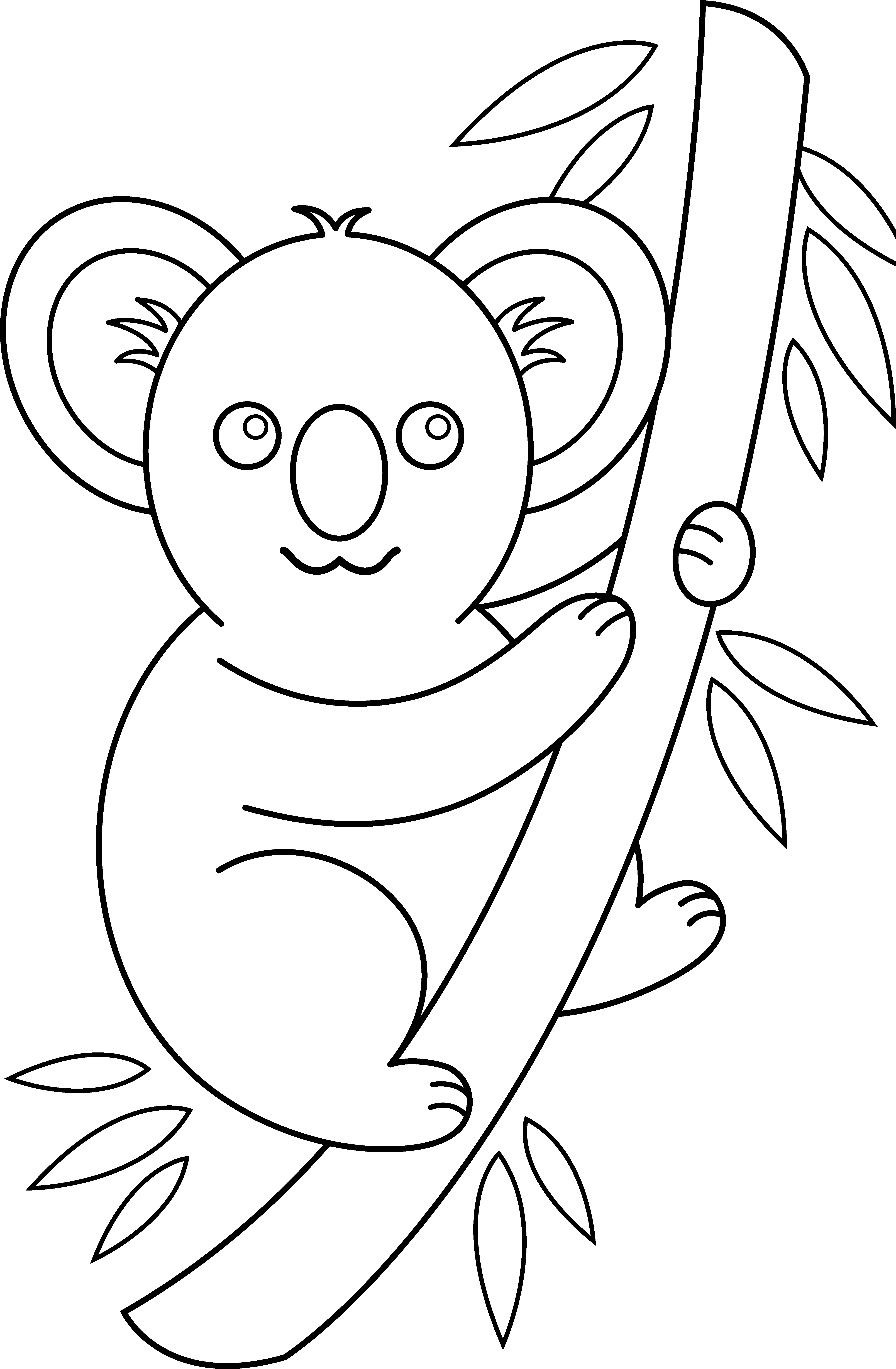 Koala Drawing at GetDrawings.com | Free for personal use Koala ...