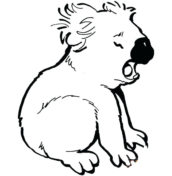 700x720 Top Rated Koala Coloring Pages Images Crying Koala Coloring Page