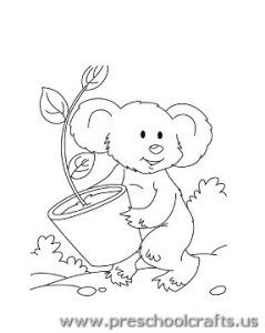 Koala Drawing Step By Step