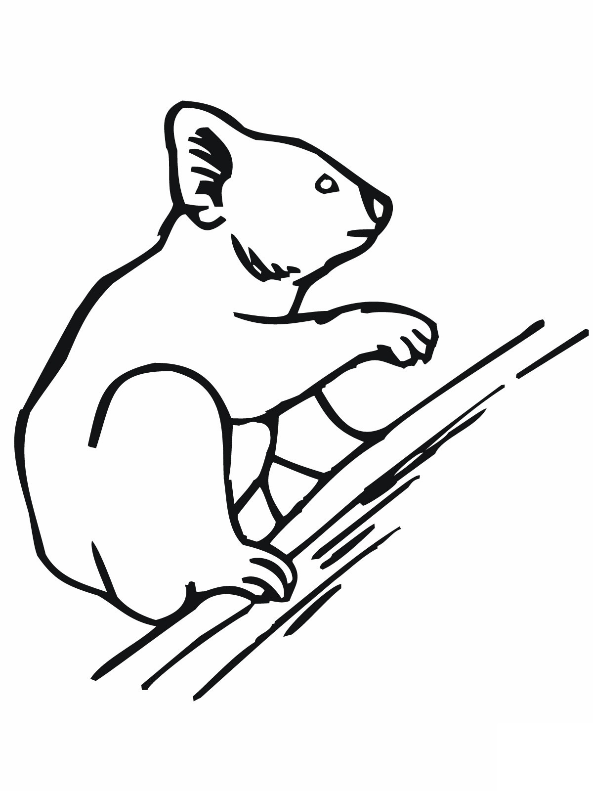 1200x1600 Drawn Koala Funny Bear Coloring Page Free Printable Pages