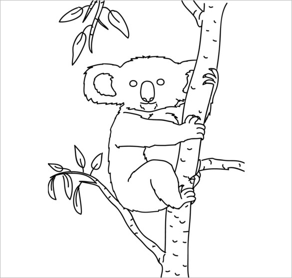 Line Drawing Koala : Koala bear drawing at getdrawings free for personal