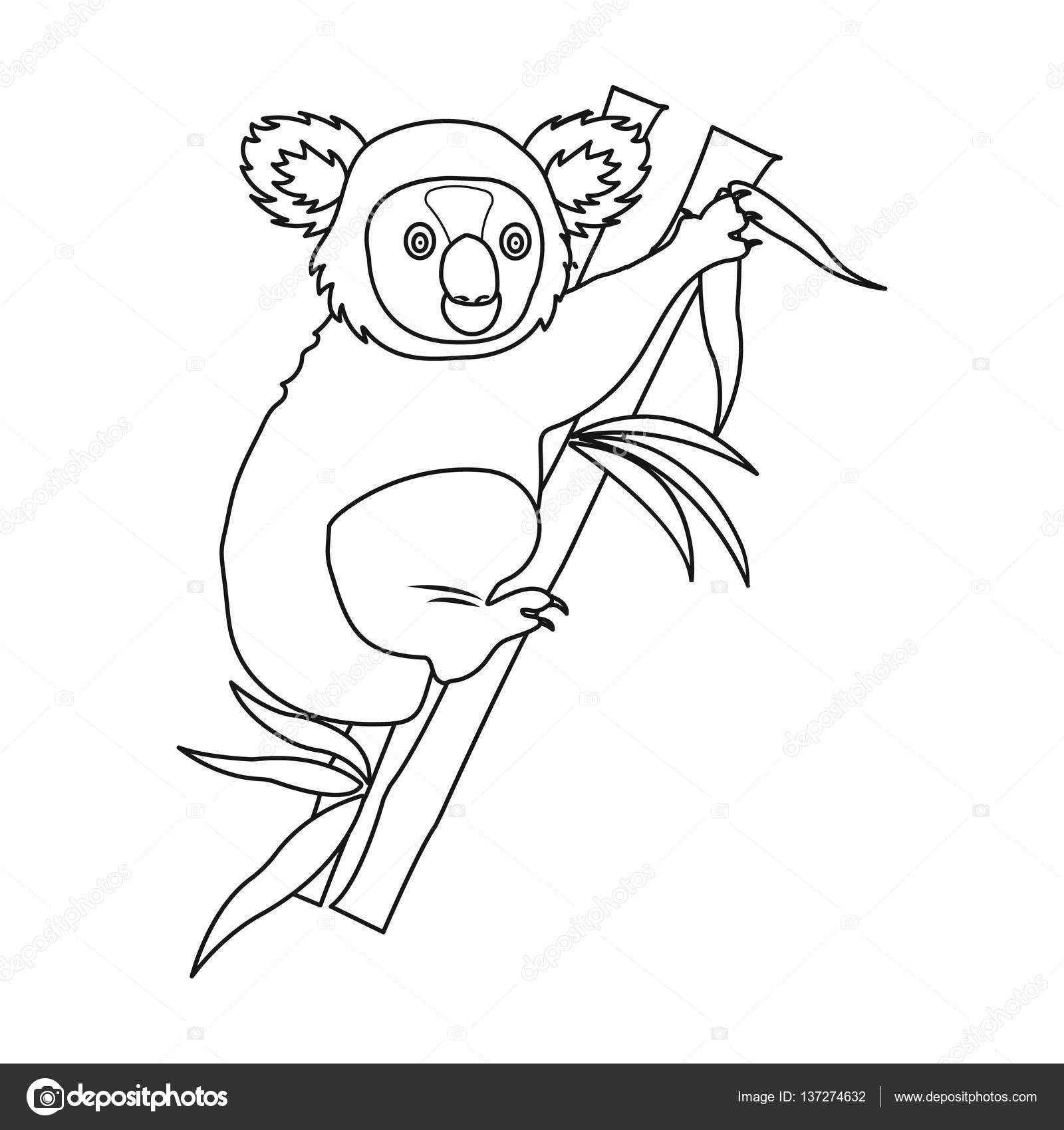 1600x1700 Australian Koala Icon In Outline Style Isolated On White
