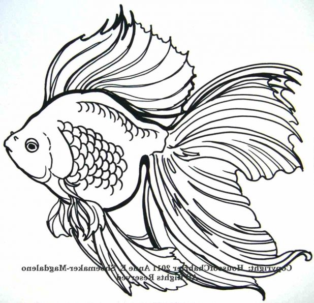 618x596 Comments Off On Simple Draw Fish Tattoo Design Japanese Koi Lucky