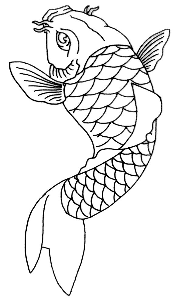 Koi Fish Drawing Simple