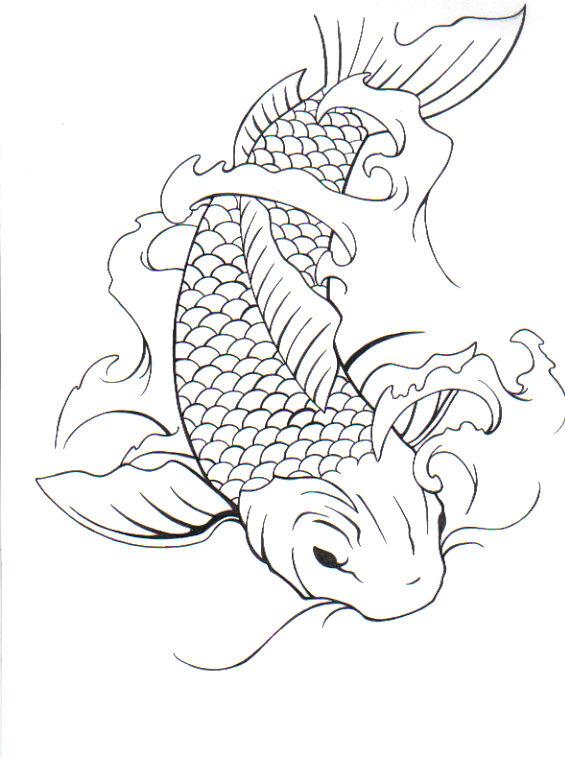 565x759 Two Koi Fish Drawing
