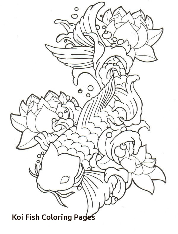 How To Draw A Koi Fish Step By Step Easy