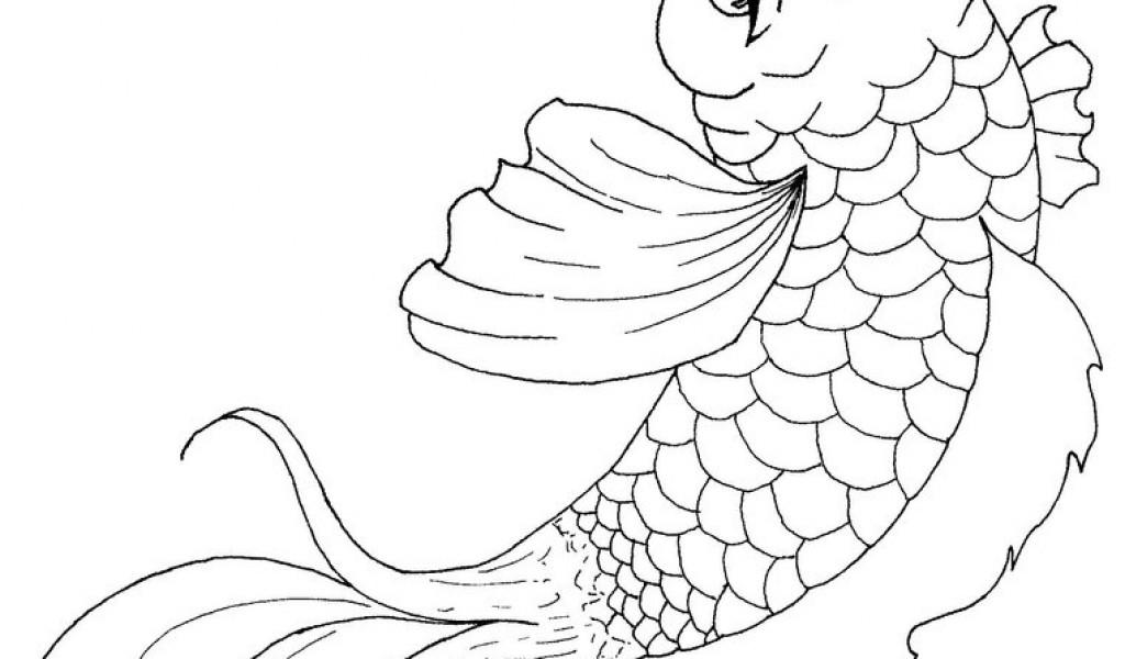 1024x600 Koi Fish Coloring Page Free Download