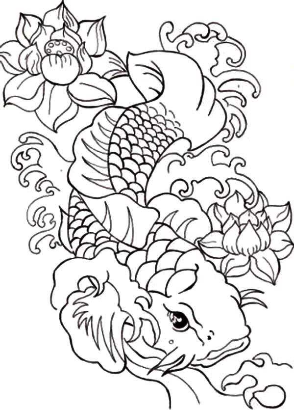 Koi Fish Drawing Step By Step at GetDrawings   Free download