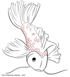236x260 How To Draw A Koi Fish Tattoo Design