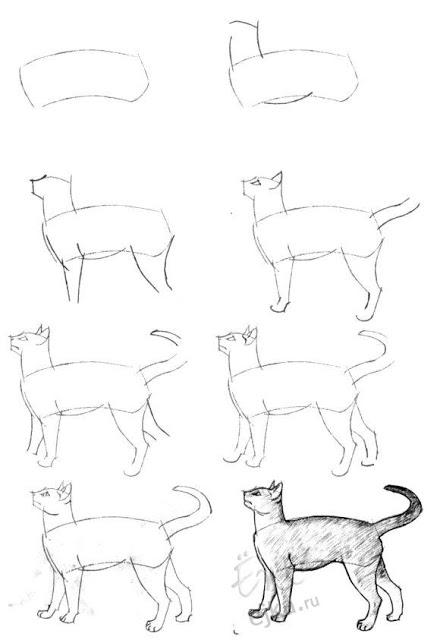 440x640 Como Dibujar Un Gato Paso A Paso A Lapiz Dibujos