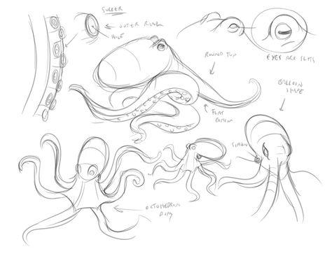 474x366 Octopus Drawing Tutorial