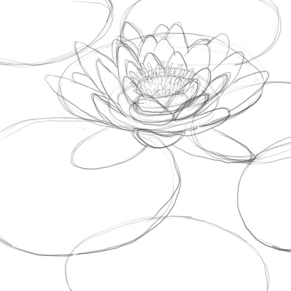 600x600 Are You Looking For A Tutorial On How To Draw A Lily Pad Look No