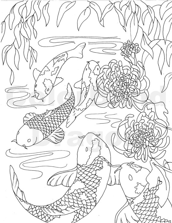 570x738 Fish, Coloring Page, Coloring Pages, Koi Coloring Page, Japanese