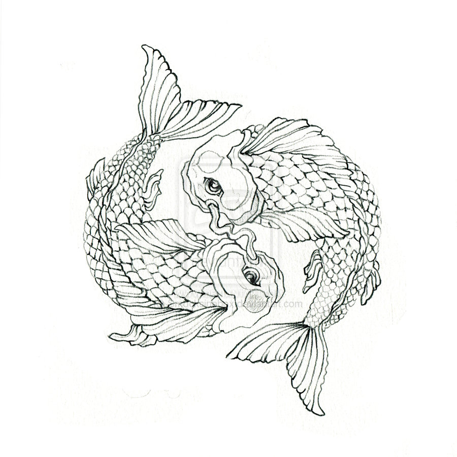 Koi Fish Simple Drawing at GetDrawings.com   Free for personal use ...