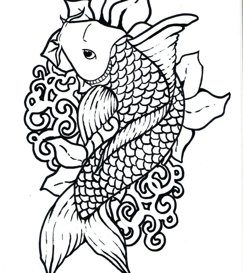 800x900 Koi Fish Chinese Carps Pisces Adult Antistress Coloring Page