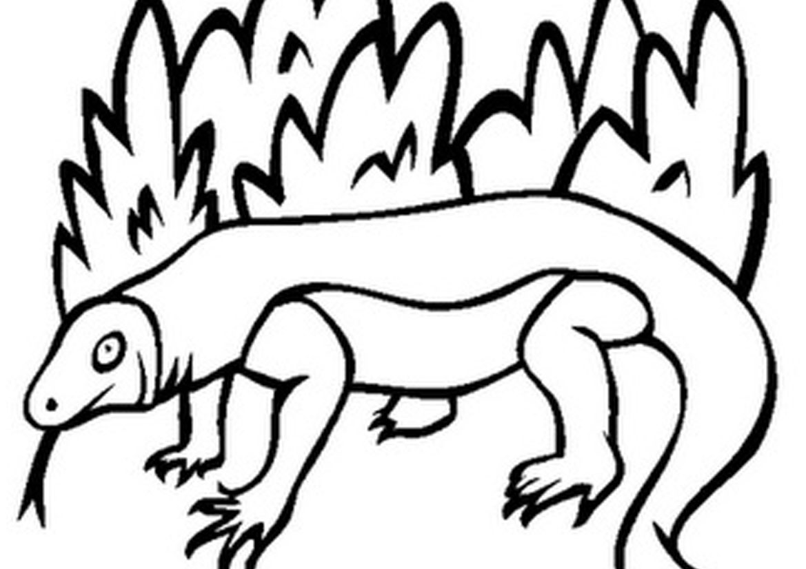 Komodo Dragon Drawing at GetDrawings.com | Free for personal use ...