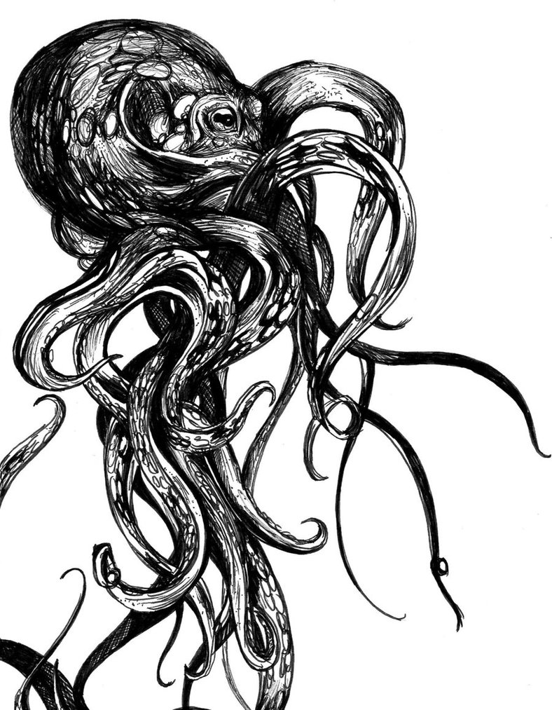 788x1013 Kraken By Mariana Lino