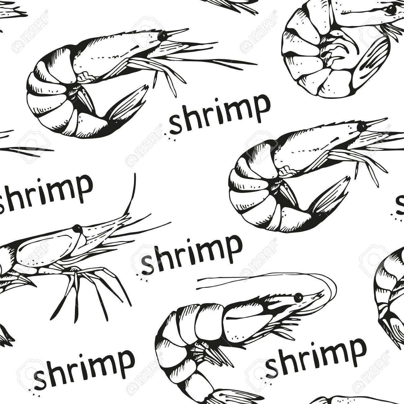 1300x1300 Seamless Pattern With Seafood, Background With Hand Drawn Shrimps