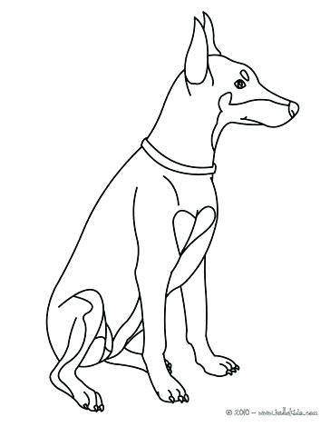364x470 Labrador Retriever Coloring Pages Retriever Coloring Pages