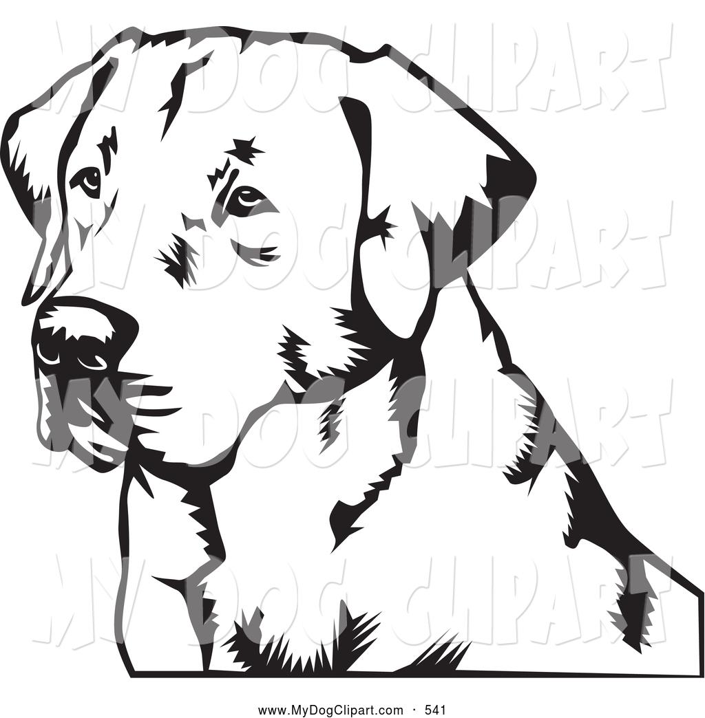 1024x1044 Labrador Retriever Drawings Clipart