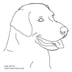 236x236 Learn How To Draw A Labrador Face (Farm Animals) Step By Step