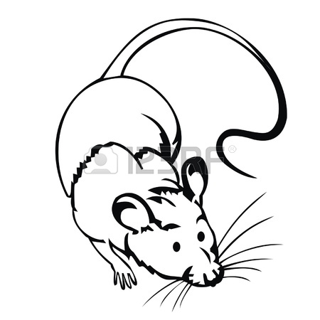 450x450 Laboratory Mouse. Royalty Free Cliparts, Vectors, And Stock