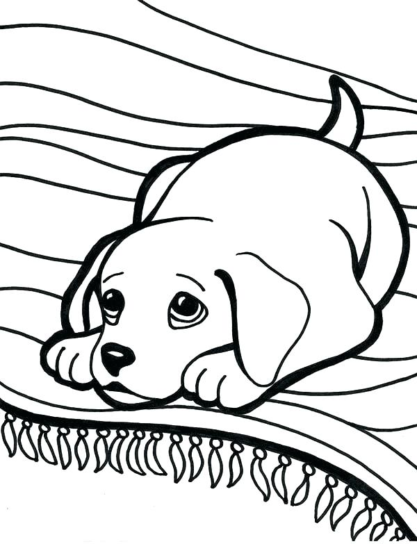 600x783 Labrador Retriever Coloring Pages Retriever Coloring Pages