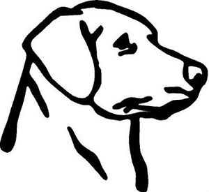 300x275 White Vinyl Decal Labrador Head Truck Puppy Dog Hunt Lab Country